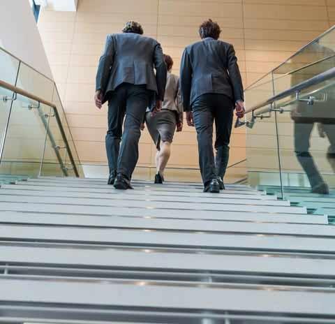 Employment Law Photo Image